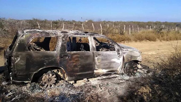Four of 19 bodies found burned in Tamaulipas have been identified