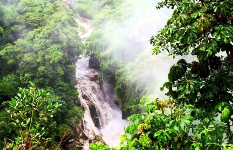 Cañón del Río Blanco National Park, a protected area in Veracruz you must visit